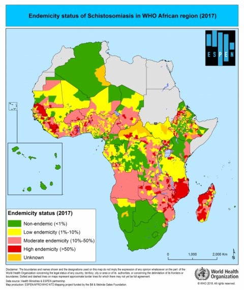 Map of African contact highlighting schistosomiasis endemicity. Copyright ESPEN