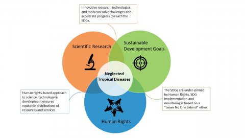 NTDs sit in a Venn Diagram where Scientific Research, Sustainable Development and Human Rights meet. The end of these diseases requires actors in all three areas to work together.