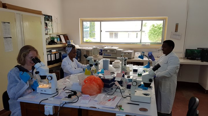 Three scientists working in a laboratory in sub-Saharan Africa